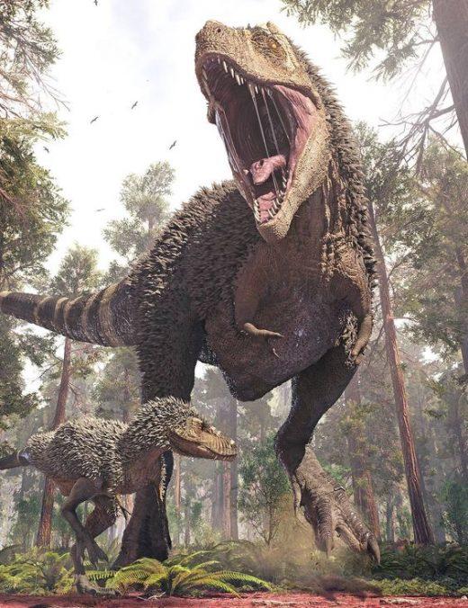Dinossauros (9)