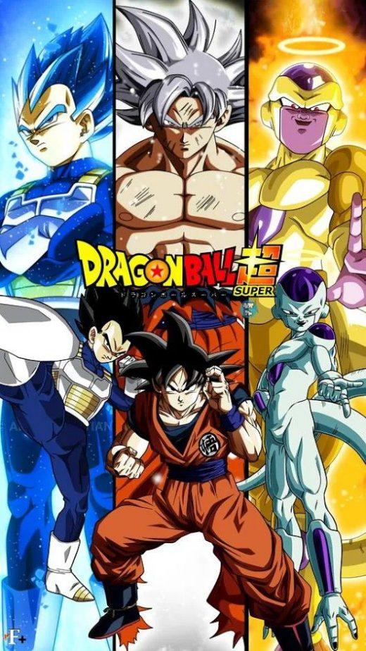imagens de dragon ball z (10)