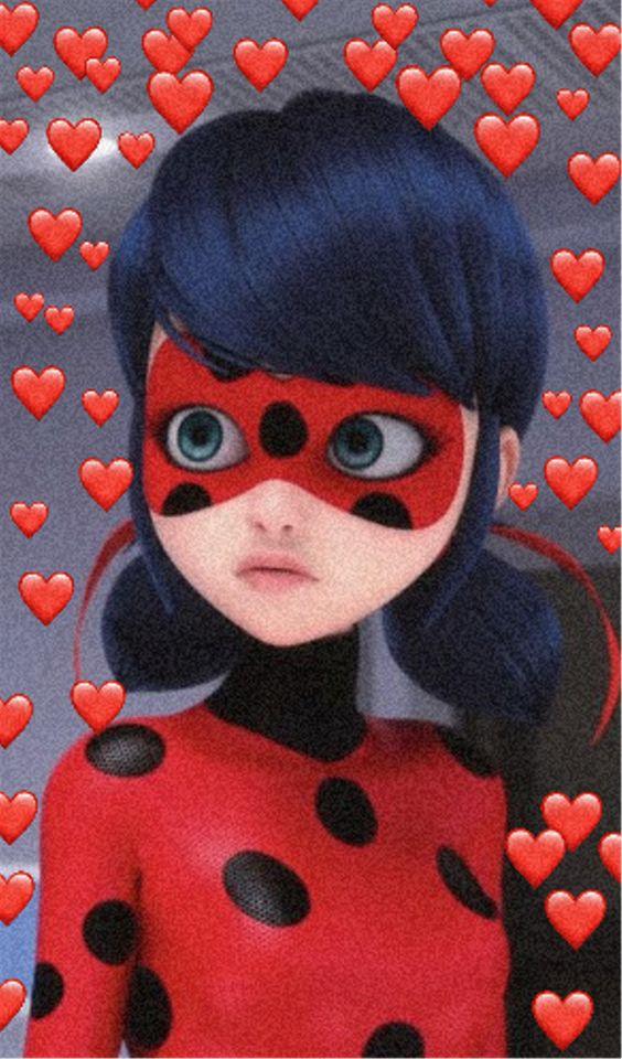 Imagens da Ladybug (11)