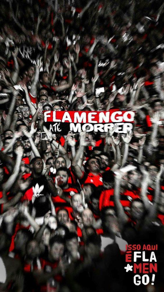 Imagens do Flamengo (1)