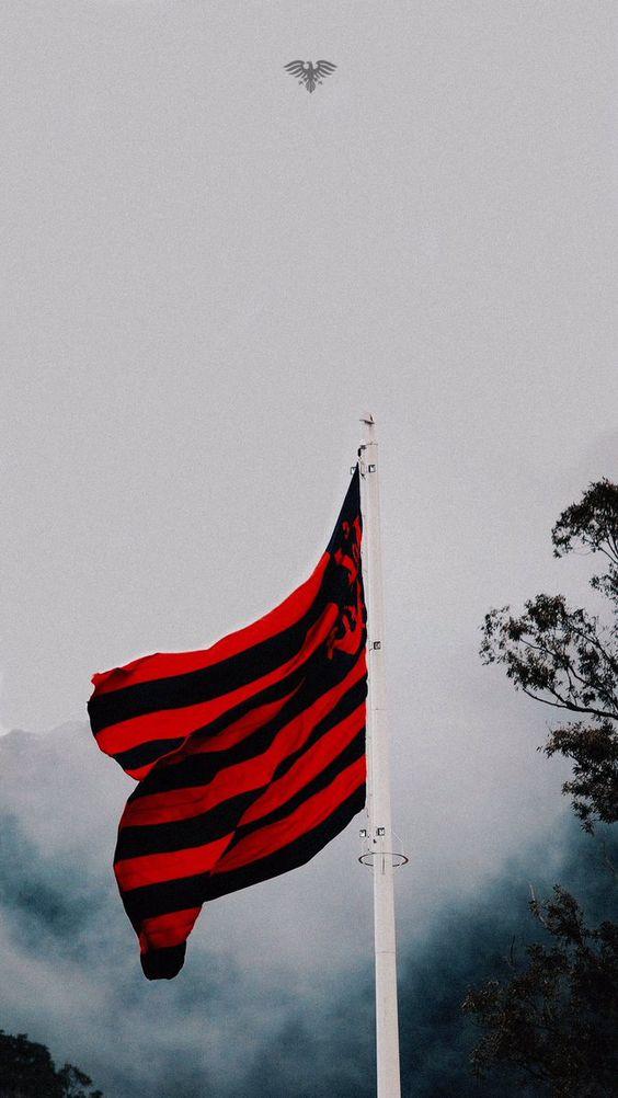 Imagens do Flamengo (18)